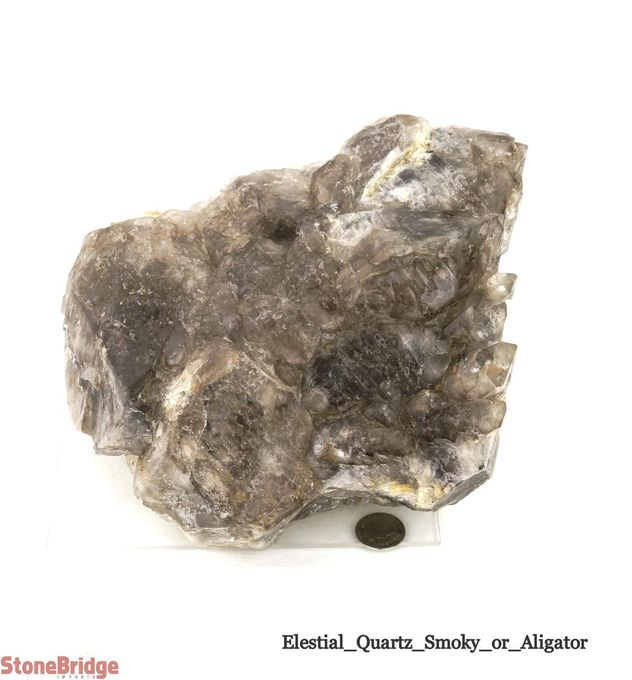 Smoky Elestial Quartz - Unique #8