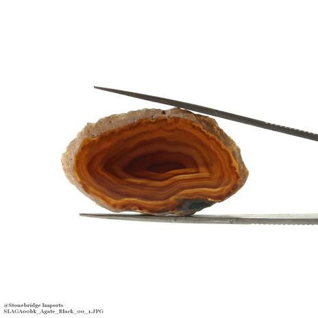 "Agate Slice Thin #00 - 1 1/4"" to 2"""