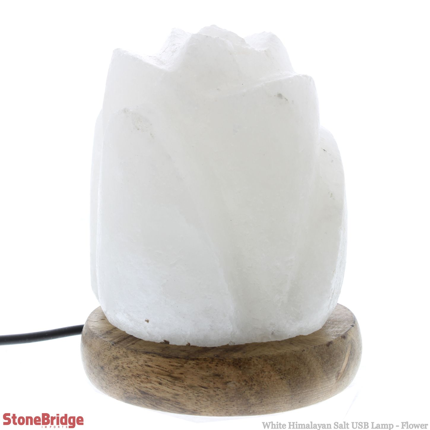 LASAUSRWfl_White Himalayan Salt USB Lamp Flower_7.jpg