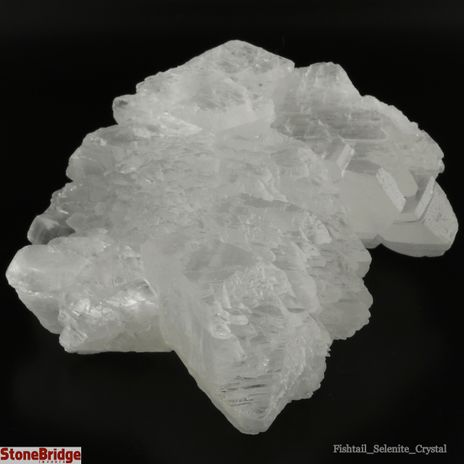 Selenite Fish Tail Crystals - Size #1 - 100g to 299g