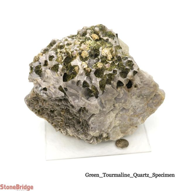 Green Tourmaline on Quartz Matrix - Unique #5