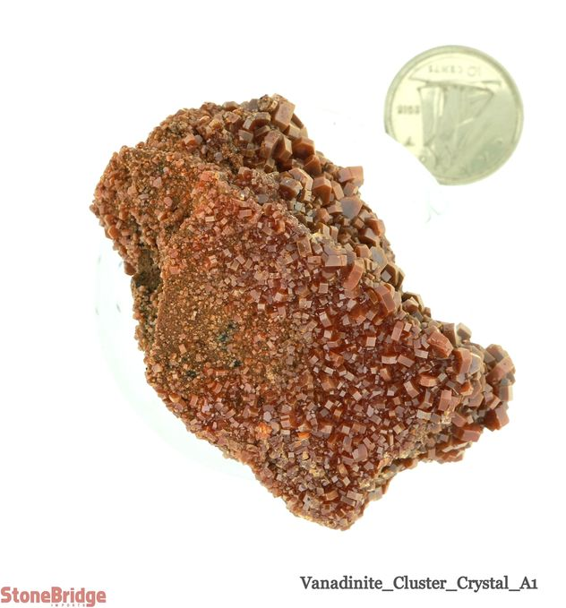 Vanadinite Crystal Cluster 'A' - Size #1
