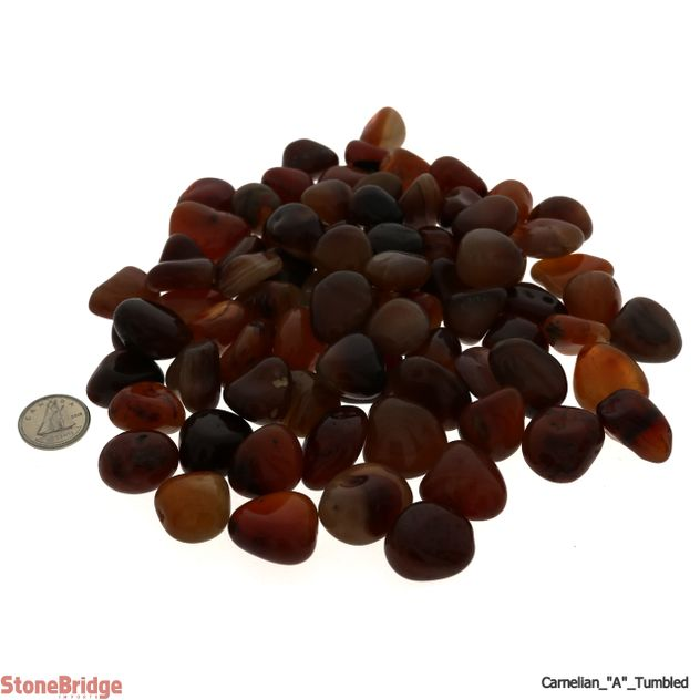 Carnelian Tumbled Stone - A Quality - 1 lb bag
