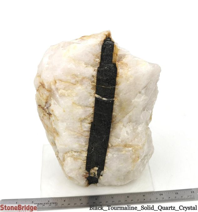 Black Tourmaline on Quartz Matrix - Unique #3