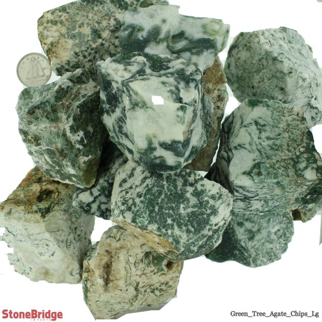 RSCHAG1GTlg_Green_Tree_Agate_Chips_Lg_1.jpg