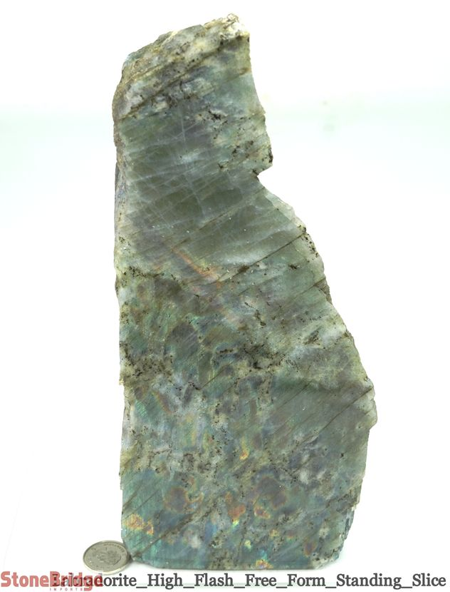 Labradorite Standing Slice - Polished Face, Rough Back - Unique #21