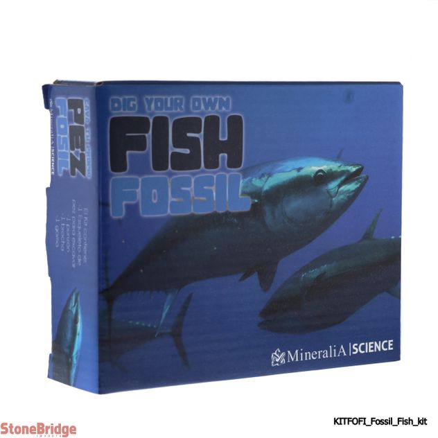 Dig Your Own - Fish Fossil - Excavation Kit