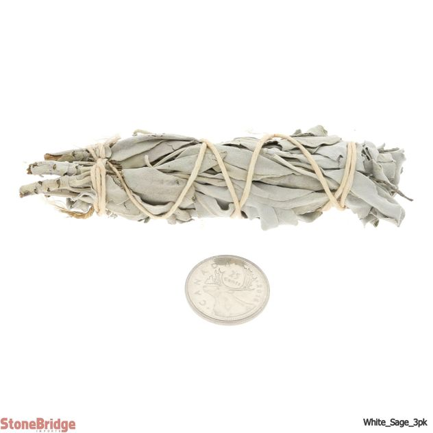 wholesale California White Sage