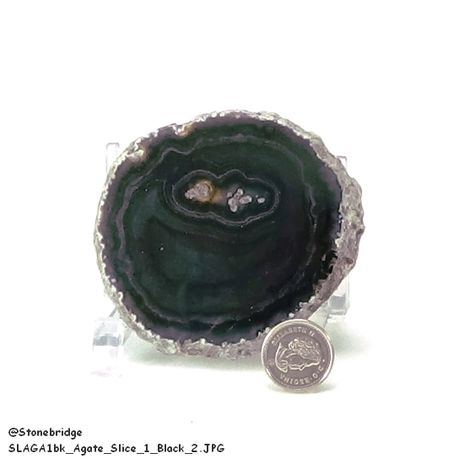 """Agate Slice - Size #1 - 2"""" to 3"""""""