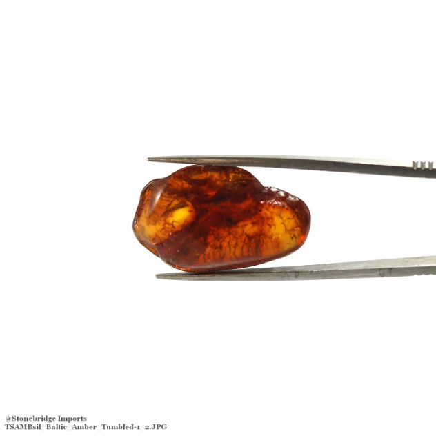 "Baltic Amber Tumbled Stone Single Piece -#1 - 3/4"" to 1 1/2"""